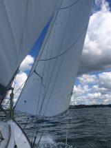 Cal 40 sails